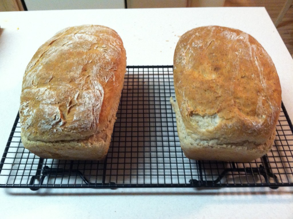 My son and I baked these two loaves of bread from the recipe featured in Season 2 Sonny from Sunny Hill Road.