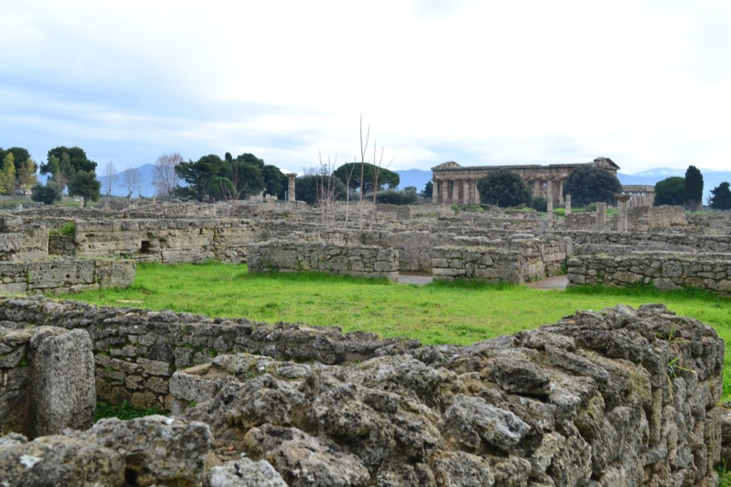 Visiting on a January afternoon, we virtually had all of Paestum to ourselves. Winter is a wonderful time to visit the region.