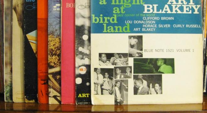 vinyl records lots